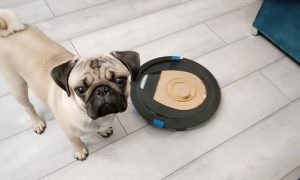 Robot vacuum cleaner whith dog